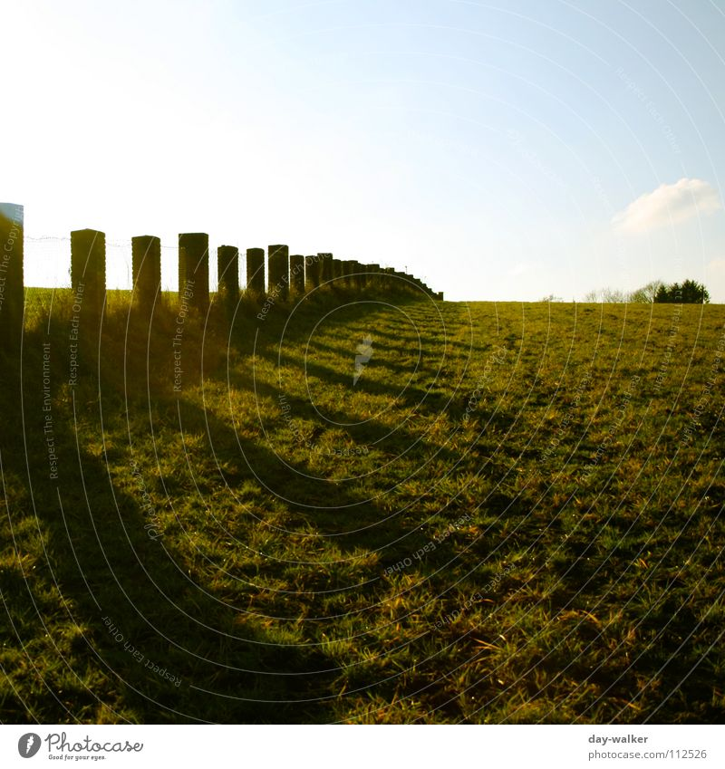 Limit Meadow Fence Light Dark Exposure Field Wall (barrier) Loop Wire Lawn palisaded Sky Stone Shadow