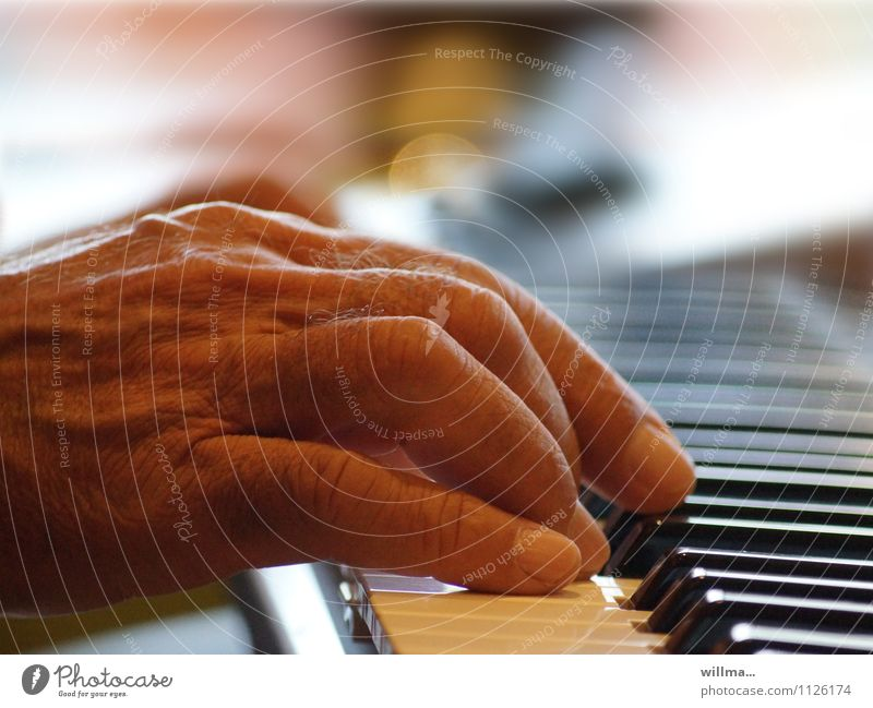 Hand of a senior plays piano Music Man Male senior Piano Keyboard Old Organ Keyboard instrument Chord Human being