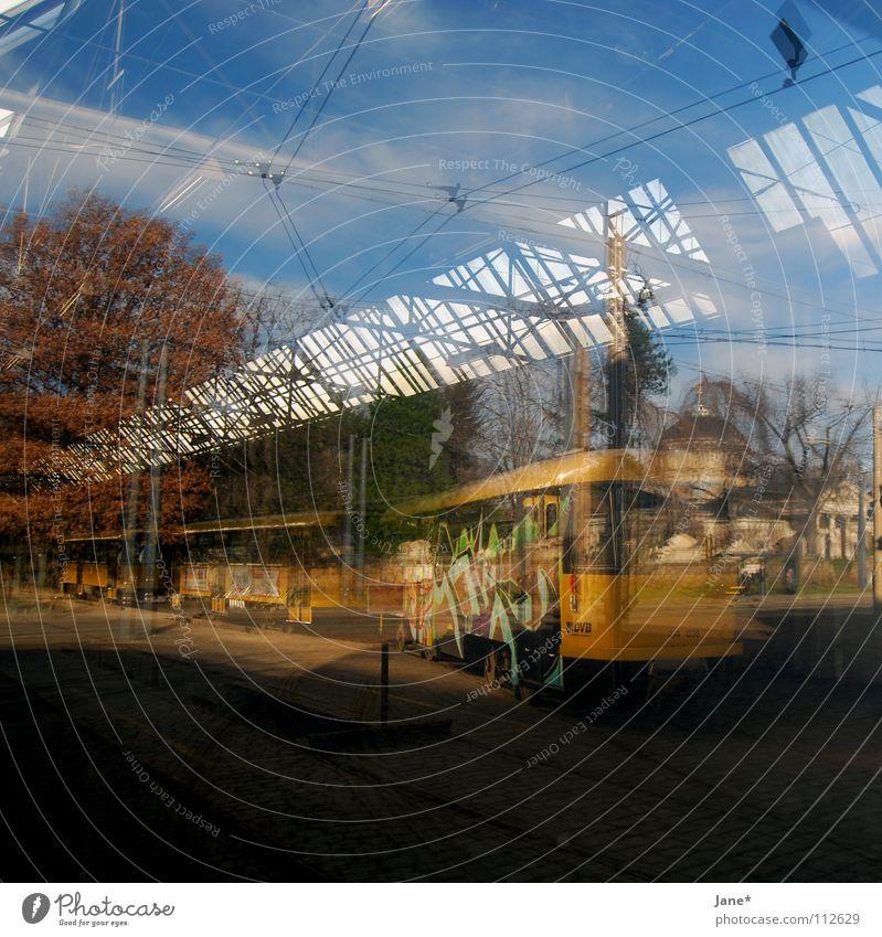 Beautiful Sky Tree Blue Black Street Life Autumn Window Line Graffiti Brown Room Glass Clarity Dresden