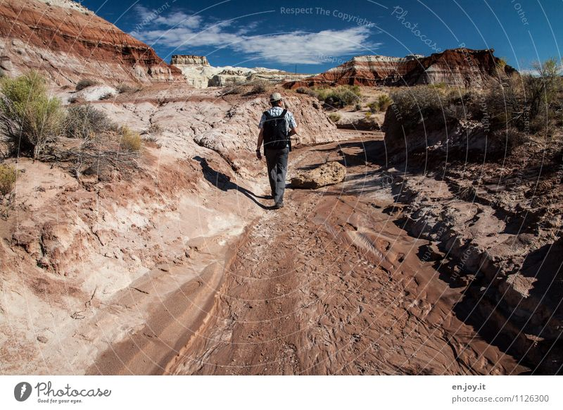 dry wash Vacation & Travel Tourism Adventure Summer Summer vacation Hiking Masculine Man Adults 30 - 45 years Nature Landscape Sky Rock Canyon Desert Riverbed