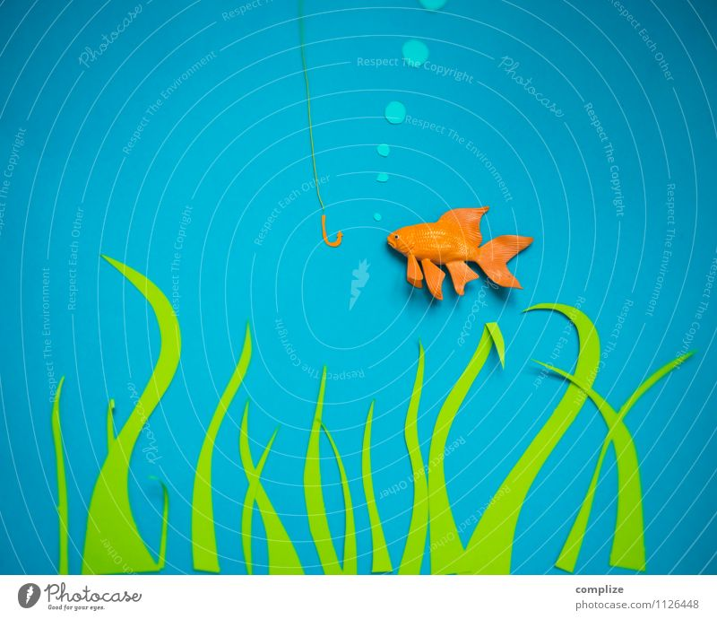 Nature Plant Water Animal Environment Lake Art Design Nutrition Creativity Paper Elements Fish River Gastronomy