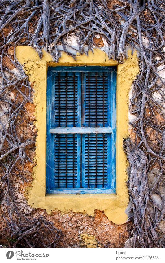 zanzibar prison island Climbing Mountaineering Nature Tree Line Old Historic Blue Brown Yellow Black White Zanzibar window closed wall Grating wood brick broken