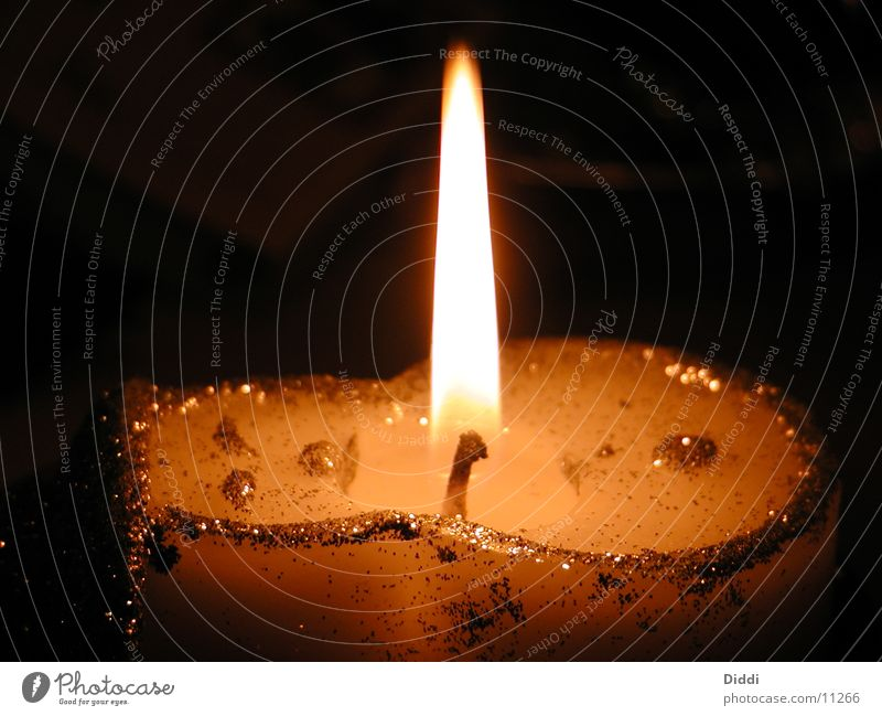 candle Candle Awareness Photographic technology Light (Natural Phenomenon) Glittering
