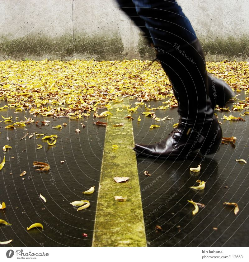 Woman Water Leaf Adults Yellow Autumn Gray Lanes & trails Jump Feet Rain Signs and labeling Wet Concrete Jeans Asphalt