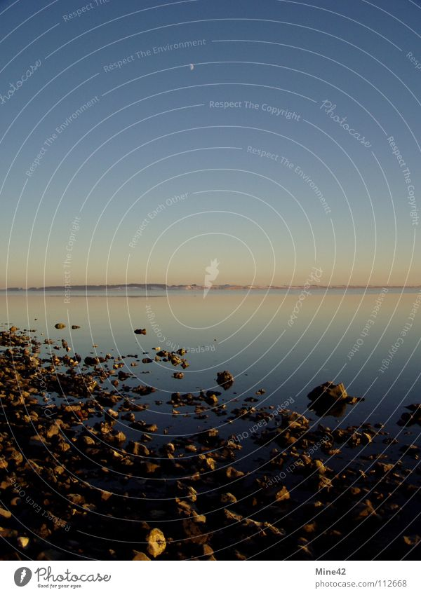 Sky Ocean Winter Beach Calm Stone Coast Clarity Moon North Denmark Fjord Celestial bodies and the universe Full  moon Limfjord