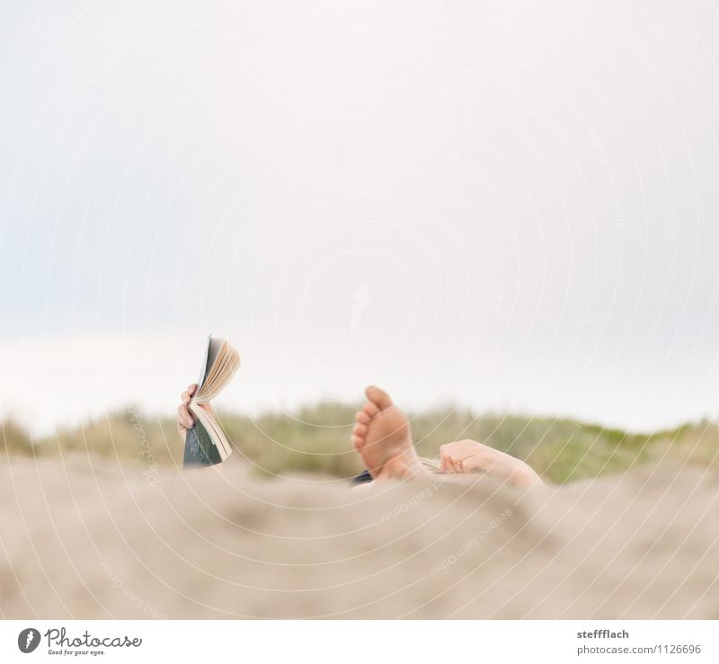 Harvest holidays Human being Feminine Woman Adults Fingers Feet 1 18 - 30 years Youth (Young adults) Book Reading Landscape Sand Sky Sunlight Summer