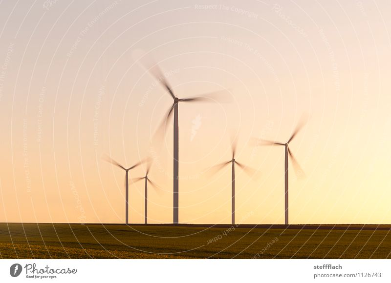 Evening Wind Agriculture Forestry Industry Energy industry Technology Advancement Future Renewable energy Wind energy plant Energy crisis Landscape Earth Air
