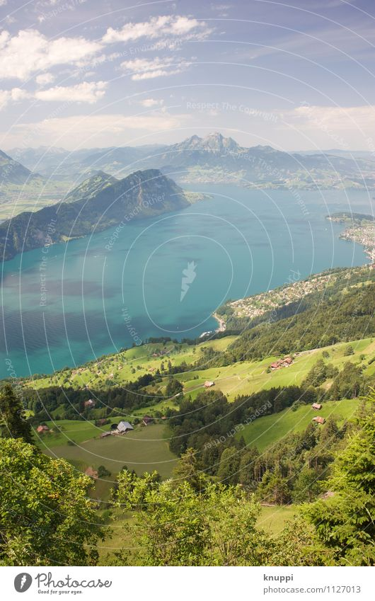 Lake Lucerne Environment Nature Landscape Plant Elements Air Water Sky Clouds Horizon Sun Sunlight Spring Summer Climate Climate change Weather