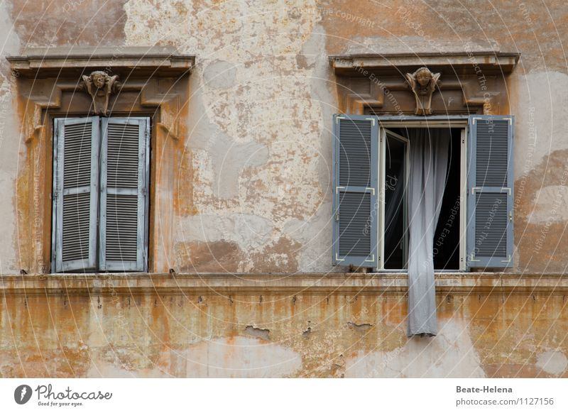 Rapunzel, lower the curtain! Vacation & Travel Living or residing Flat (apartment) Trastevere Rome Italy House (Residential Structure) Wall (barrier)