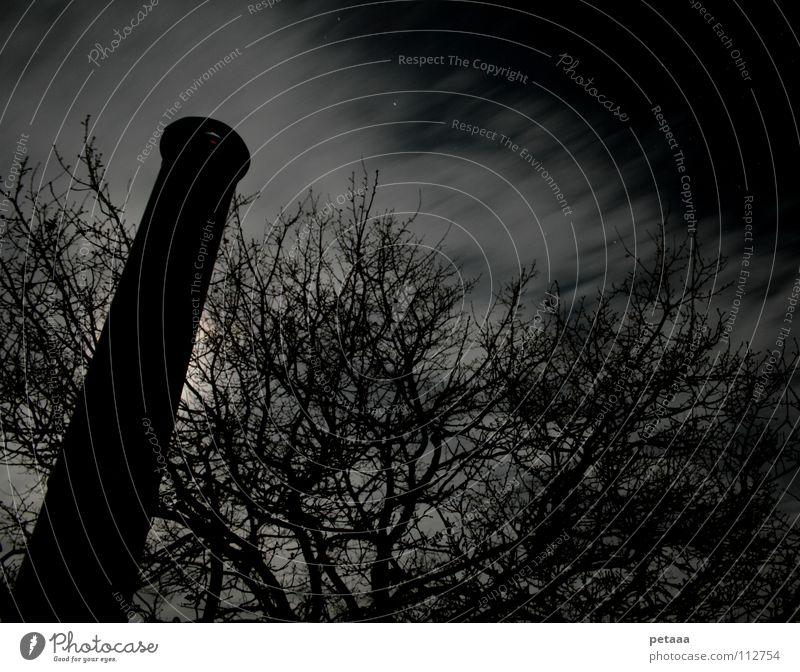 Sky Tree Clouds Night sky Branch Moon Iron-pipe Chimney