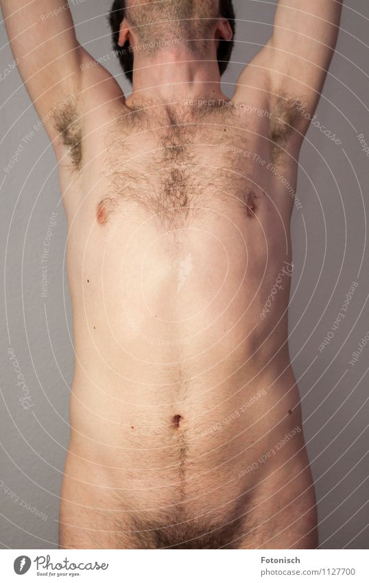 Hands up and pants down Human being Masculine Young man Youth (Young adults) Man Adults Body Chest Stomach Upper body Hair Armpit 1 18 - 30 years Hairy chest