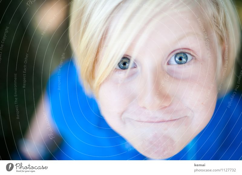 Blond boy looks cheekily into camera Human being Masculine Child Boy (child) Life Head Eyes 1 3 - 8 years Infancy Hair and hairstyles Blonde Smiling Looking