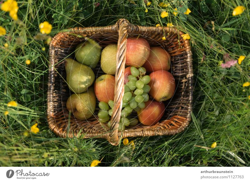 Fruit basket in the meadow Apple Bunch of grapes Pear Nutrition Picnic Organic produce Vegetarian diet Slow food Shopping Healthy Eating Trip Summer Sun Garden
