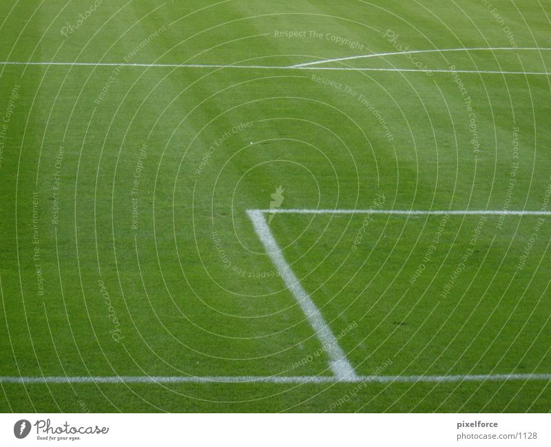 White Green Football pitch Line Soccer Lawn Rostock Penalty area