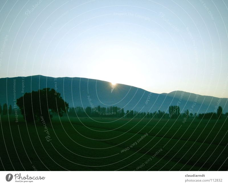 morning mood Morning Sunrise Wake up Arise Field Vantage point Far-off places Hill Assisi Italy Fresh Green Tree Meadow Mountain Dawn Rope Landscape
