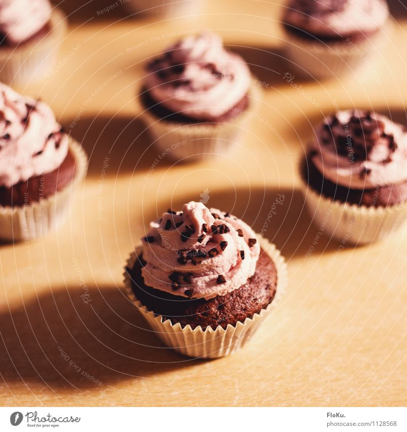 Raspberry Chocolate Cupcakes Food Cake Dessert Candy Nutrition To have a coffee Cook Kitchen Delicious Sweet Muffin Cream Bakery shop Colour photo Interior shot