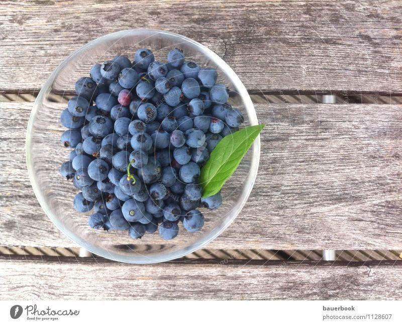 blueberry harvest Food Fruit Cake Dessert Blueberry Nutrition Organic produce Vegetarian diet Juice Bowl Healthy Wellness Well-being Summer Flat (apartment)