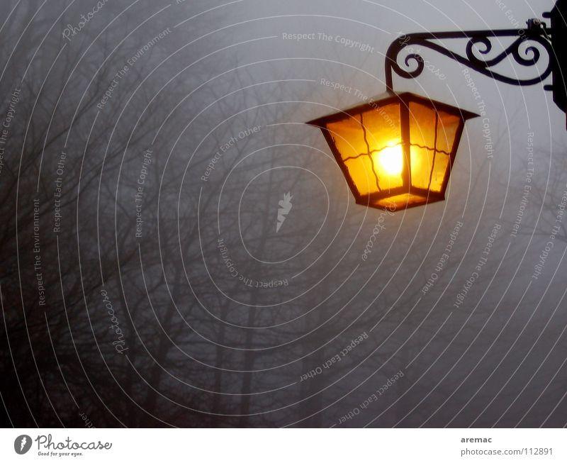 Lamp Autumn Landscape Moody Fog Trust Heidelberg