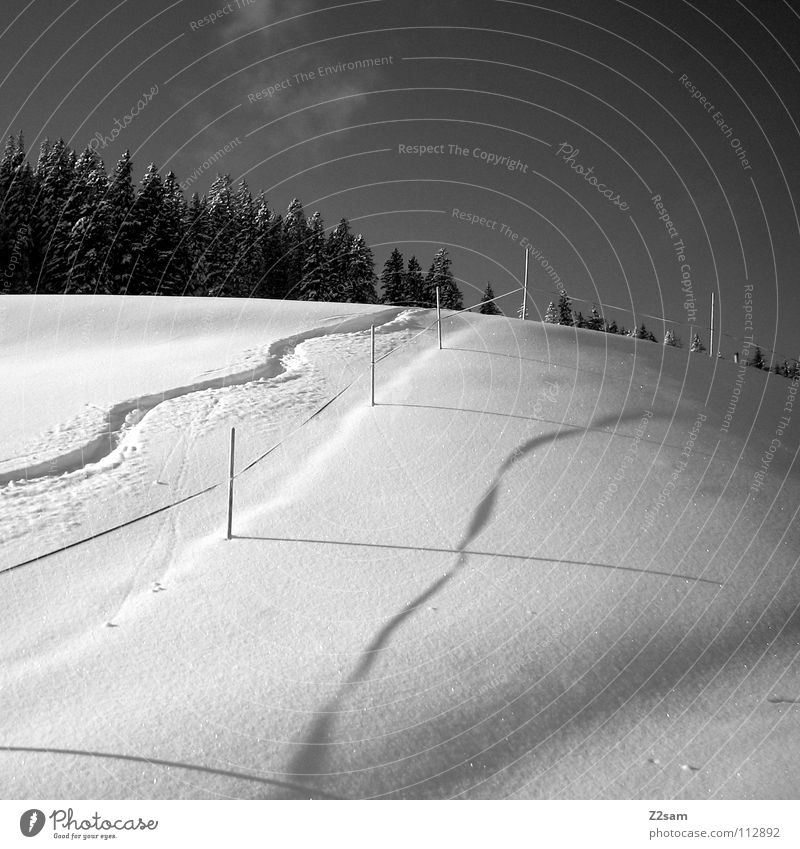 Nature Beautiful White Loneliness Calm Winter Forest Black Mountain Cold Lanes & trails Snow Line Waves Handrail Tracks