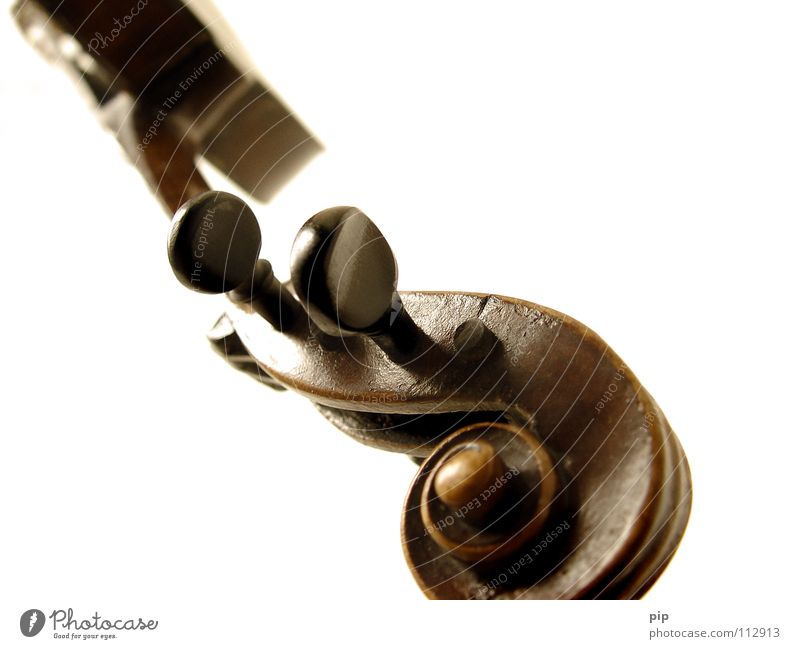 White Loneliness Music Art Culture Concert Footbridge Hover Snail Brook Musical instrument Arch Violin Musical instrument string Classical Frame