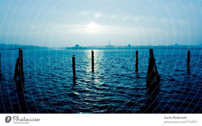 pile driver Ocean Kieler Förde Clouds Back-light Waves Horizon Reflection Cold Morning Loneliness Dark Maritime Sky Autumn Pole seagulls Water Blue Calm