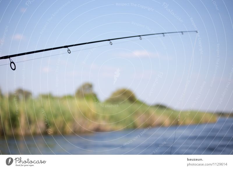 fresh. Leisure and hobbies Fishing (Angle) Environment Nature Landscape Water Sky Cloudless sky Beautiful weather River bank Okavango Namibia Africa Fishing rod