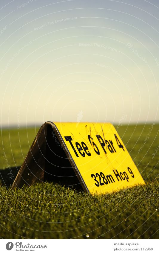 tee Field Golf ball Golf course Grass Green Sky Sunrise Tee off Ball sports Academic studies Ace pitch Lawn Sports Tea Arrest Hollow PAR range Fairy green fee