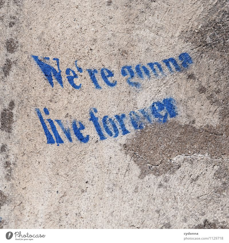 Old Life Graffiti Death Healthy Time Freedom Lifestyle Dream Characters Creativity Joie de vivre (Vitality) Future Transience Uniqueness Eternity