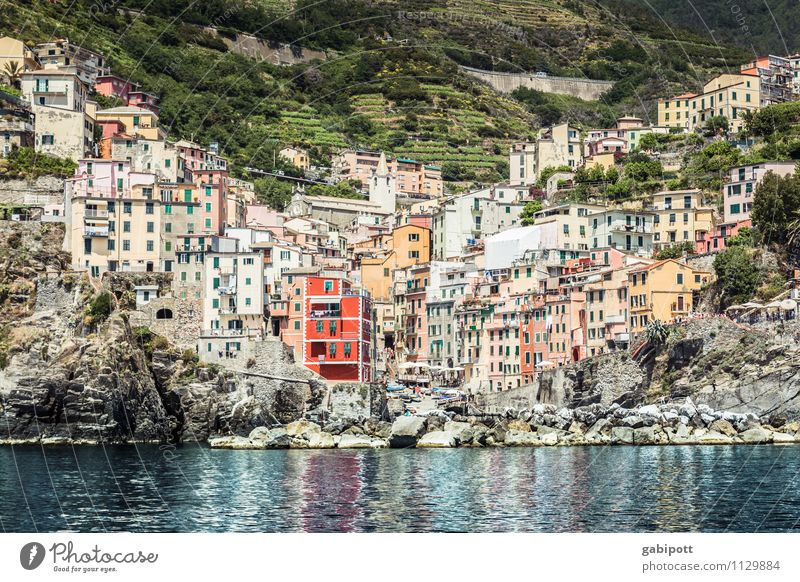 CINQUE TERRE Relaxation Calm Fragrance Vacation & Travel Tourism Trip Adventure Far-off places Sightseeing Cruise Water Summer Beautiful weather Hill Coast