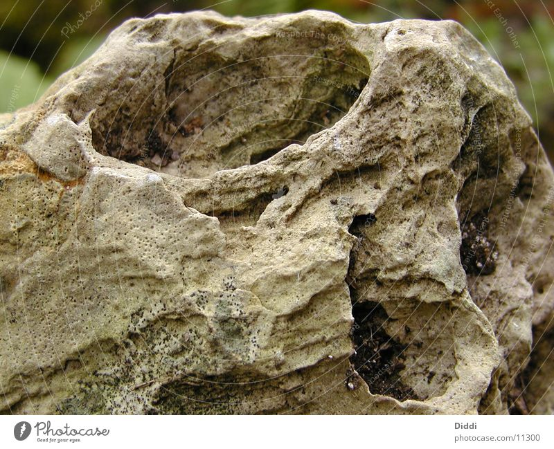 eye of the stone Stone Rock