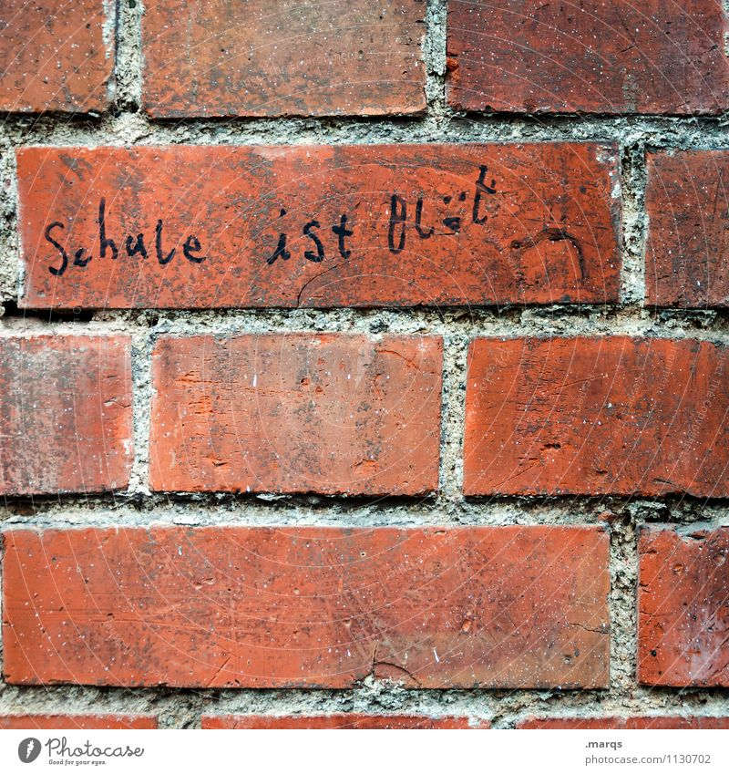 another brick in the wall Education School Wall (barrier) Wall (building) Characters Spelling Figure of speech Authentic Funny Emotions Advice Communicate