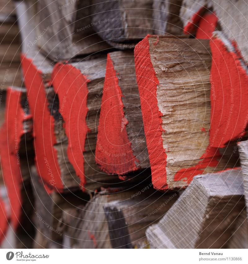 red area Nature Tree Brown Gray Red Firewood Fuel Wood Stack Supply Label Weathered Warm period Wood grain share Colour Varnish Colour photo Exterior shot