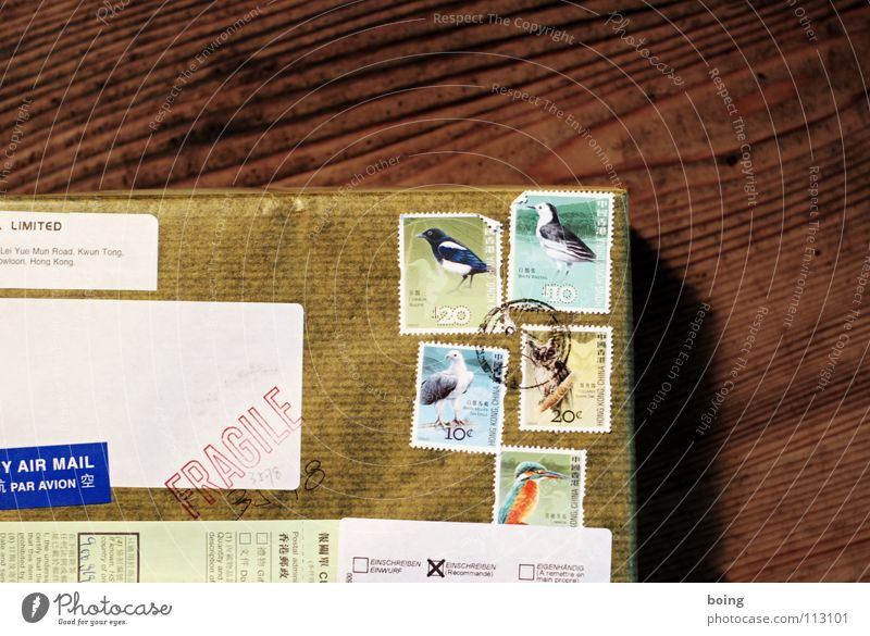Bird Gift Logistics Letter (Mail) Raven birds Surprise Carton Fragile Package Partially visible Section of image Delivery Stationery Stamp Addressee