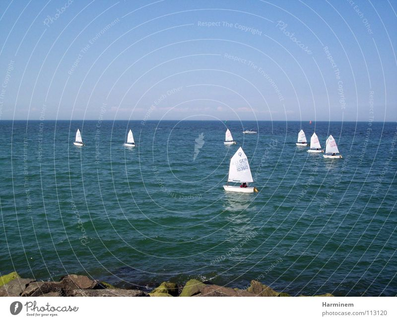 sailboats Watercraft Small Regatta Multiple Ocean Coast Sailboat White Vacation & Travel Well-being Exterior shot Sporting event Competition Beach