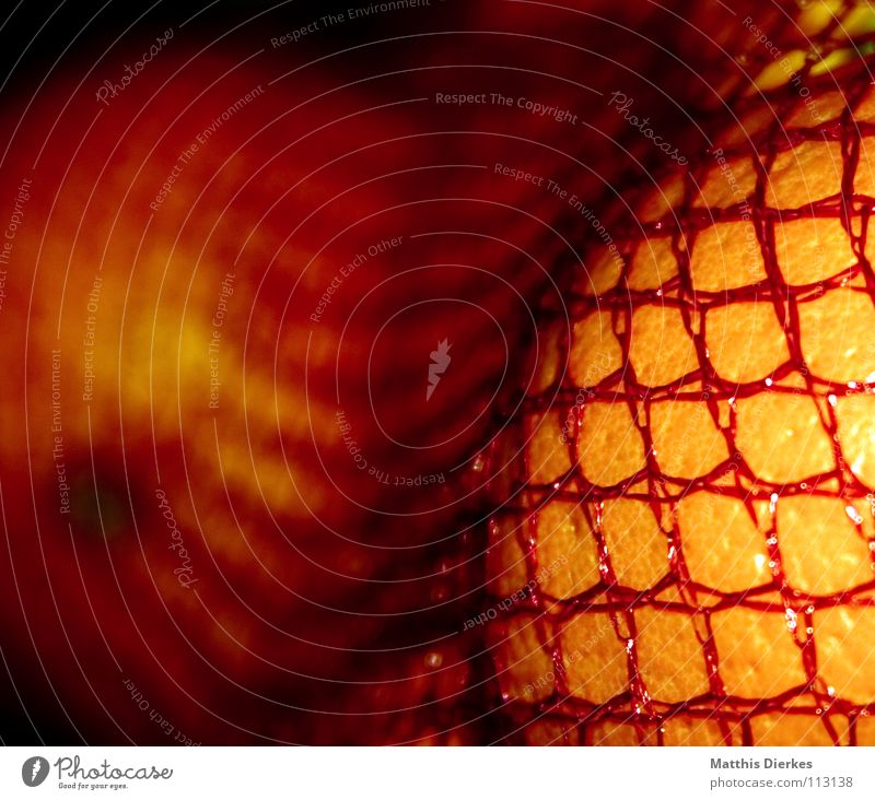 Red Yellow Fruit Orange Fresh Nutrition Net To enjoy Vegetable Chest Delicious Trade Markets Meal Vitamin Juicy