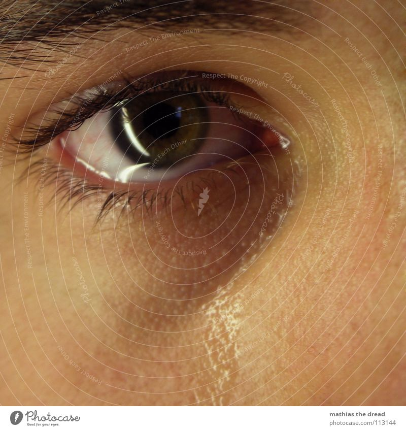 Man Water Face Eyes Emotions Sadness Walking Grief Near Pain Distress Damp Concern Cry Eyelash Tears