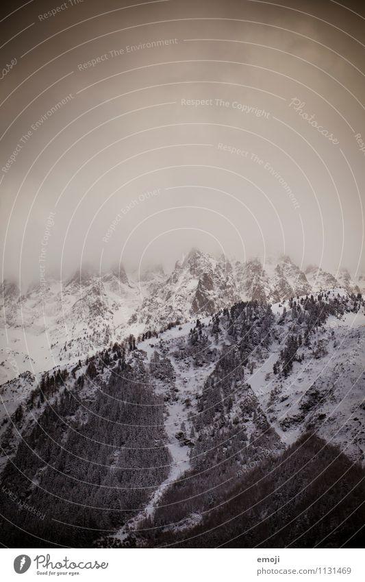 winter Environment Nature Landscape Winter Climate Climate change Storm Snow Alps Mountain Peak Exceptional Threat Dark Natural Colour photo Subdued colour