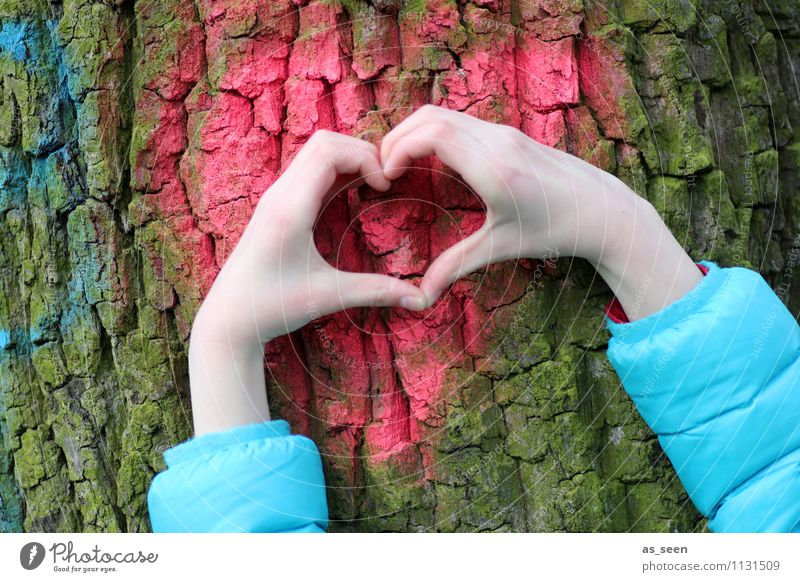 my friend, the tree Hand Fingers 1 Human being 8 - 13 years Child Infancy Environment Nature Plant Tree Tree bark Tree trunk Jacket Heart Authentic Exceptional