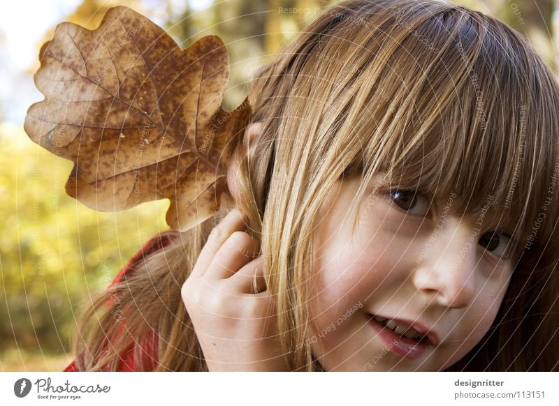 elephant Leaf Autumn Autumn leaves Oak tree Oak leaf Child Girl Playing Dress up Elephant Impish Ear Joy Elf Looking To fall oak game fun Style