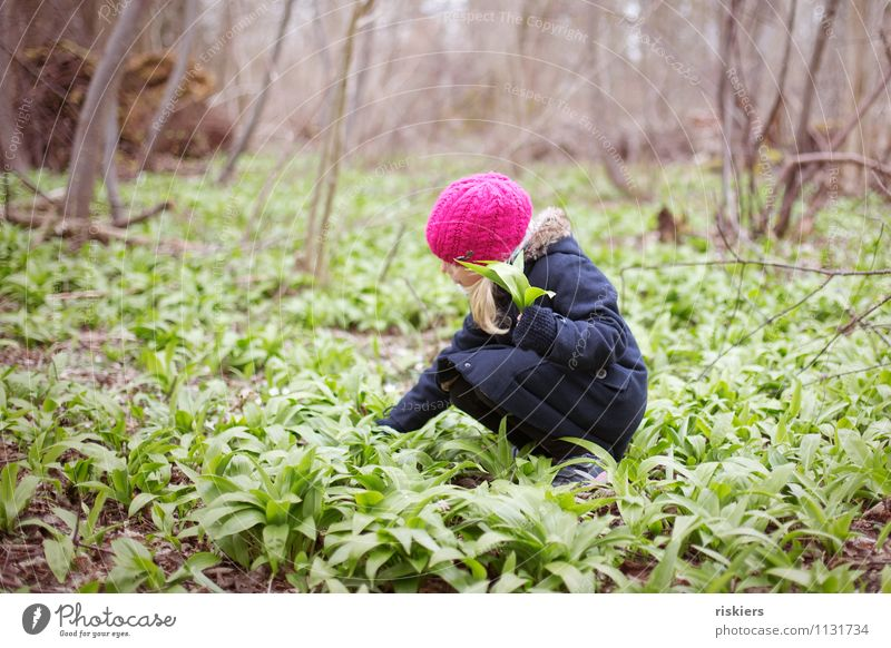 Today we have bear's garlic soup iii Human being Feminine Child Girl Infancy 1 3 - 8 years Environment Nature Plant Spring Wild plant Forest Discover Relaxation