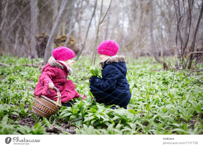 Today there's bear's garlic soup. Feminine Child Girl Brothers and sisters Sister Infancy 2 Human being 3 - 8 years Environment Nature Plant Spring Wild plant
