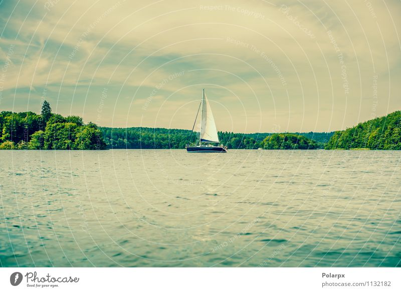 Sailboat on a lake Joy Beautiful Relaxation Vacation & Travel Cruise Summer Ocean Waves Sports Nature Landscape Clouds Tree Forest Coast Lake River Transport