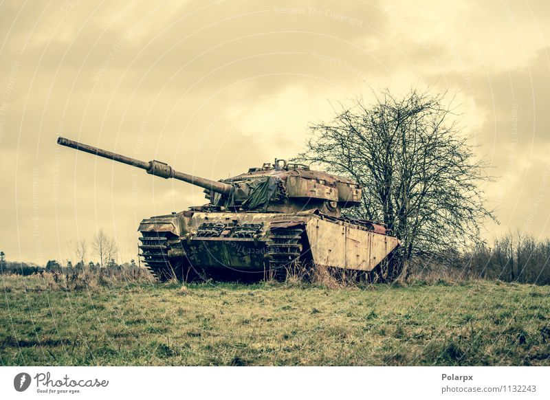 Tank on a field Nature Old Green Tree Landscape Forest Autumn Grass Transport Vantage point Photography Retro Historic Camping War Engines