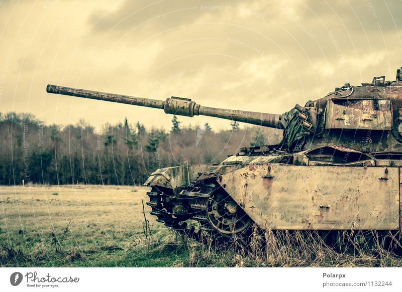 Gun on a tank Camping Engines Nature Landscape Autumn Tree Grass Forest Transport Old Historic Retro Green War Bosnia Serbia Camouflage fall field gun military