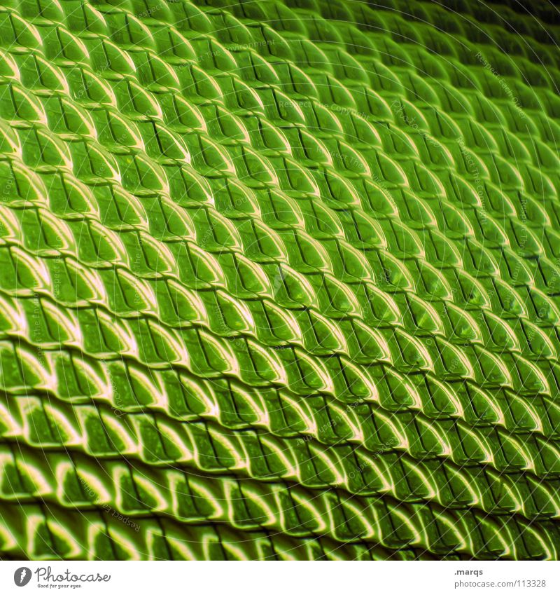 lime Structures and shapes Surface Pattern Smoothness Geometry Color gradient Progress Glittering Breakage Background picture Corner Round Line (row of words)