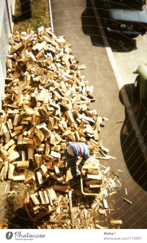 Tree Cold Street Warmth Autumn Wood Brown Work and employment Room Car Power To enjoy Blaze Logistics Near Physics