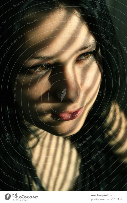 shadow Young woman Youth (Young adults) Woman Adults Piercing Black-haired Line Brown eyes Light Shadow Sunlight Portrait photograph Face Copy Space bottom