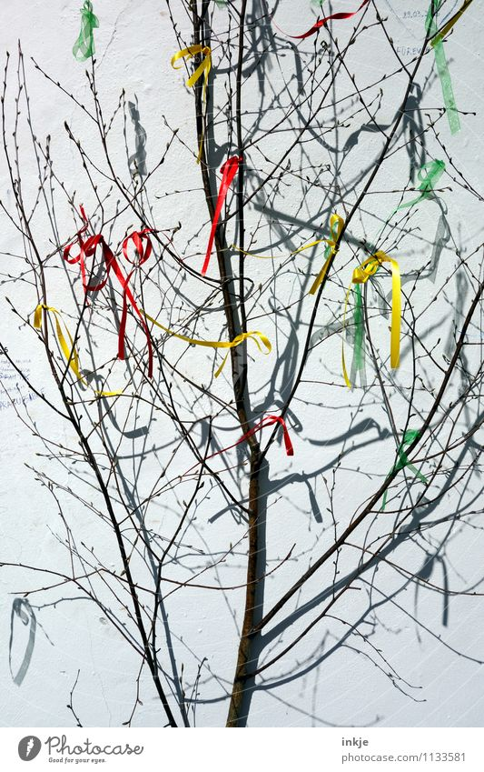 Tree Joy Emotions Spring Feasts & Celebrations Moody Lifestyle Party Leisure and hobbies Decoration Happiness Branch Idea Easter Twig Flag
