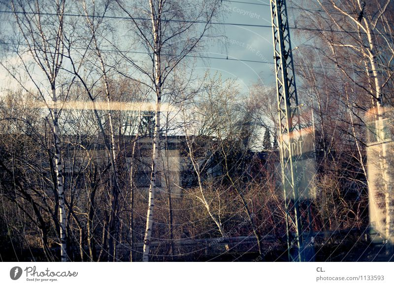 draft Environment Nature Landscape Sky Beautiful weather Tree Transport Means of transport Traffic infrastructure Train travel Rail transport Train compartment