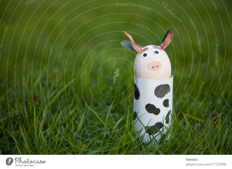 Easter cow Cow Cool (slang) Funny Cute Positive Crazy Easter egg nest Egg Neutral Background